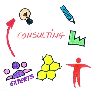 Consulting E-Learning